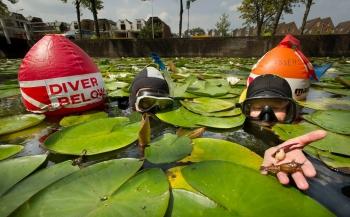 Watertheater in Leiden: ontdek de sloot