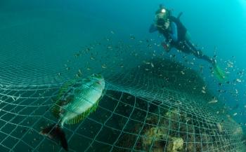Ghostfishing kent geen grenzen