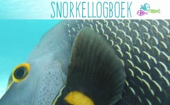 Zo wordt snorkelen nog leuker!