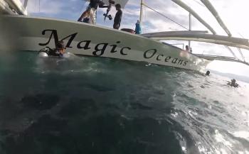 Wendy Versluis - Magic Oceans Deel 1