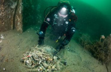 Expeditie Noordzee 2016 - De eerste duikdag