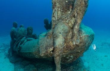 Kijkje onder water - Canarische Eilanden