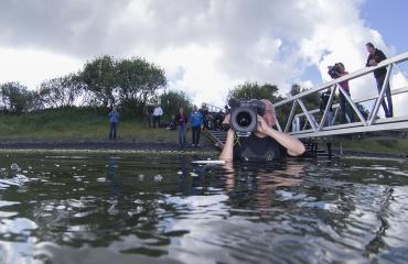 René Weterings - (O)NK onderwaterfotografie 2014, dag 2