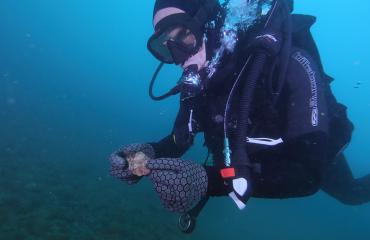 Onderwaterarcheologen ontdekken artefacten van Aboriginals