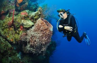 Belize: 8 van de...