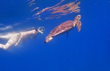 Berthold Raadsen - Snorkelen op het Tent Reef in Saba
