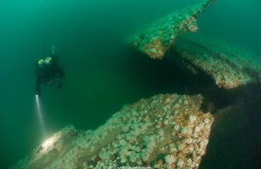 Live Bait Squadron - film over historische ramp
