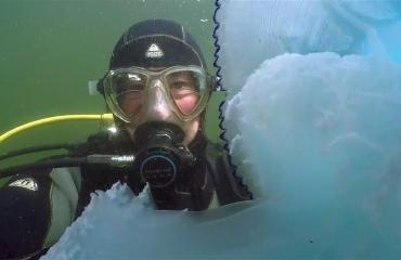 Dirk Van den Bergh - 103 duiken in Zeeland samengevat in 13 minuten