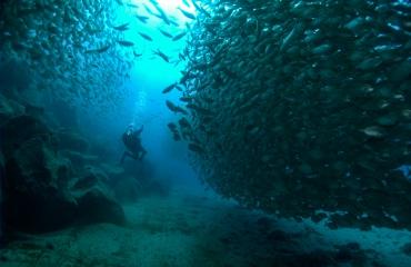 Lanzarote: drie favorieten van Marian de Jongh