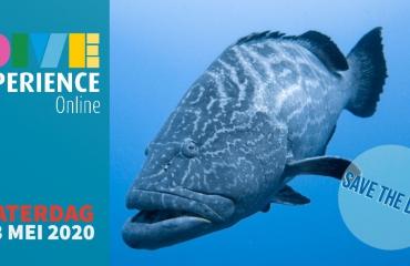 Tweemaal 'Save the DiveXperience date'