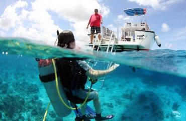 Zomerse reistip van Dive and Travel - Curaçao