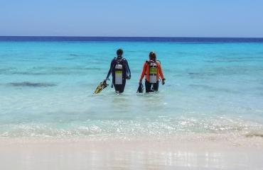 Zomerse reistip van Diving World - Bonaire