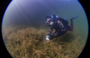 Gek op de stek: Patrick van Gemert en het Bronsbergenmeer