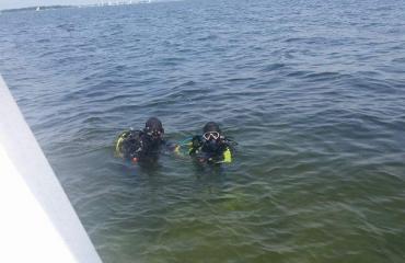 Eduard Bello - Samen duiken
