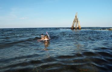 De vijf mooiste snorkelplaatsen in Zeeland