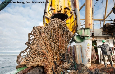 29.000 kg aan netten uit Noordzee gehaald