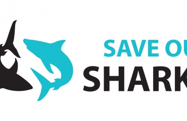 Wat is Save Our Sharks?