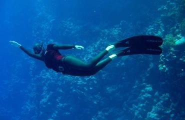 Waarom zijn de vinnen van een freediver zo lang?