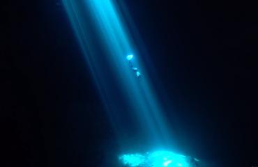Liquid Dream - Freediven in hypnotiserende lichtstralen