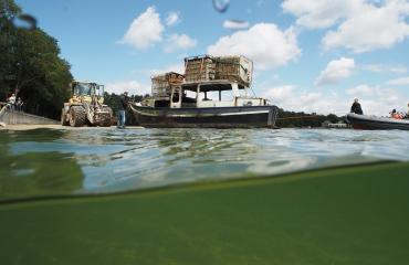 Maikel van Niftrik - Bootproject van De Waterman