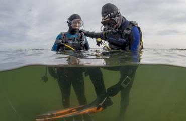 NOB vraagt hulp van niet-NOB-duikers
