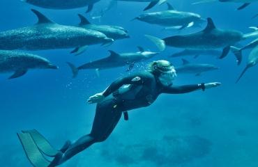 Duikvaker 2020 - Let's go freediving!