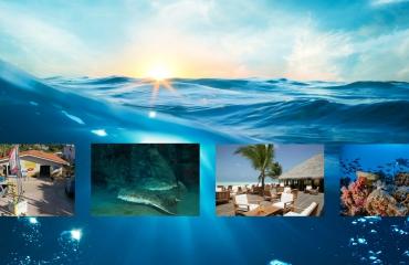#Najaar2021 - Vier tips van de reispro's
