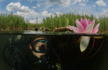 ONK Onderwaterfotografie 2019 - DuikeninBeeld Publieksprijs