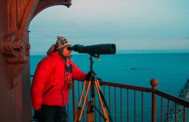 Groots en intens: walvis- en orkatrip