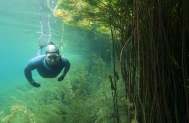 Landelijke DFA-dag - een dag vol freediving bij De Beldert