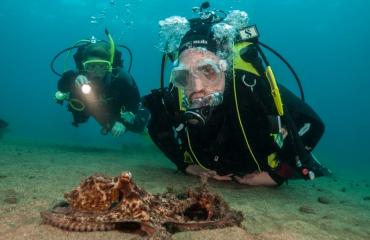 Lanzarote - Aangenaam duiken in Europa