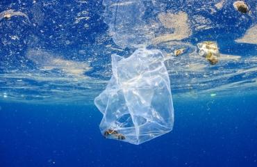 Interactieve kaart laat verspreiding plastic in oceanen zien