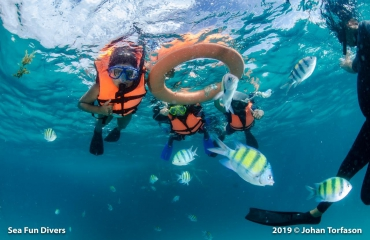 Tips voor snorkelen in Thailand