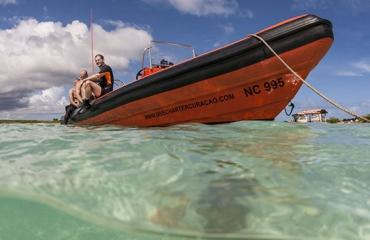 Curaçao: kantduiken of bootduiken?