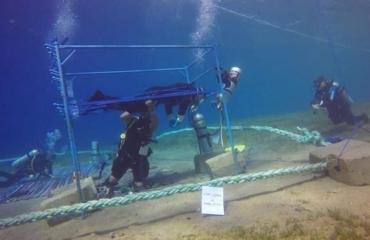 Nieuw record: de langste duik ooit