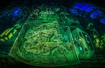 Underwater Photographer of the Year 2019: stuur je foto's in