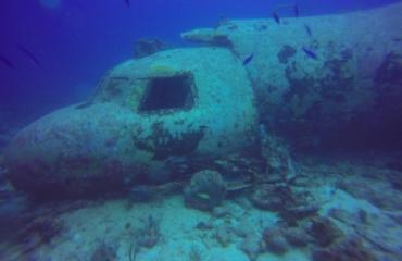 Vijf wrakken van Aruba