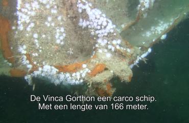 Jackie Oomen - Noordzee Expeditie 2014