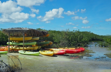 Door de mangroves van Bonaire per kayak en snorkel