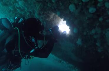 Lars Dekker - Een Noordzee duik zo mooi als op de Rode Zee