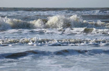 Duikster tijdens expeditie op Noordzee omgekomen