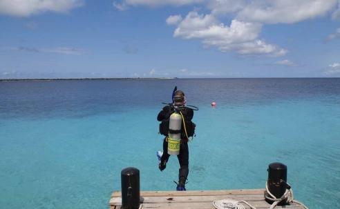Win een fotoreis naar Bonaire!