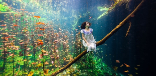 Film: I am Cenote
