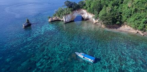 Wel of niet naar Sulawesi?