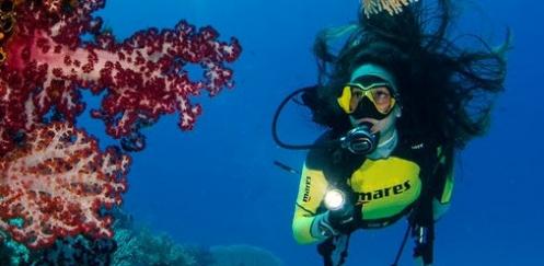 Mares gaat voor Blue Oceans