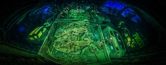 Winnaars Underwater Photographer of the Year 2018 zijn bekend