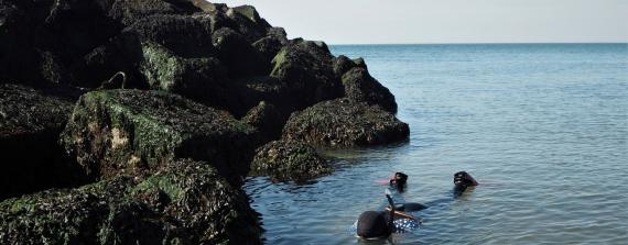 Snorkelen versus duiksport