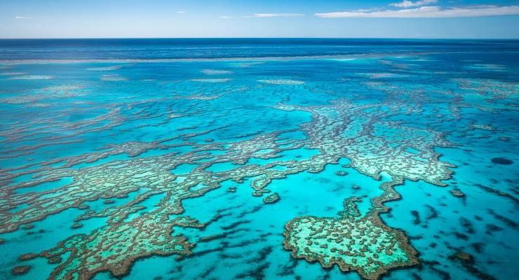 Koraalaanwas Great Barrier Reef fors minder