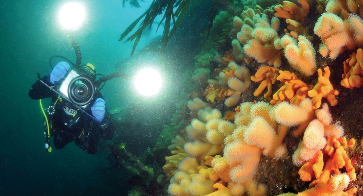 Noorwegen: coole out of the box duikbestemming!