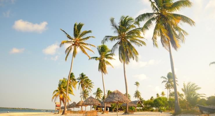 Duiken rondom romantisch Zanzibar